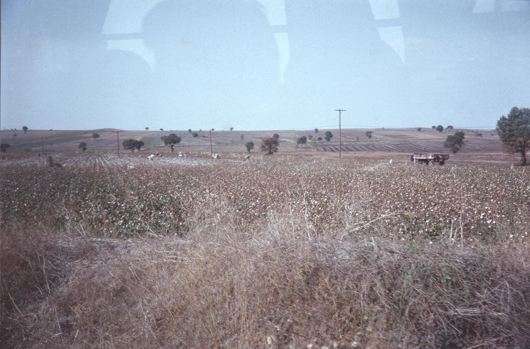 001 landschap